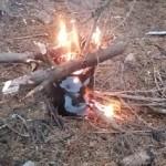 surwiwalowe ognisko